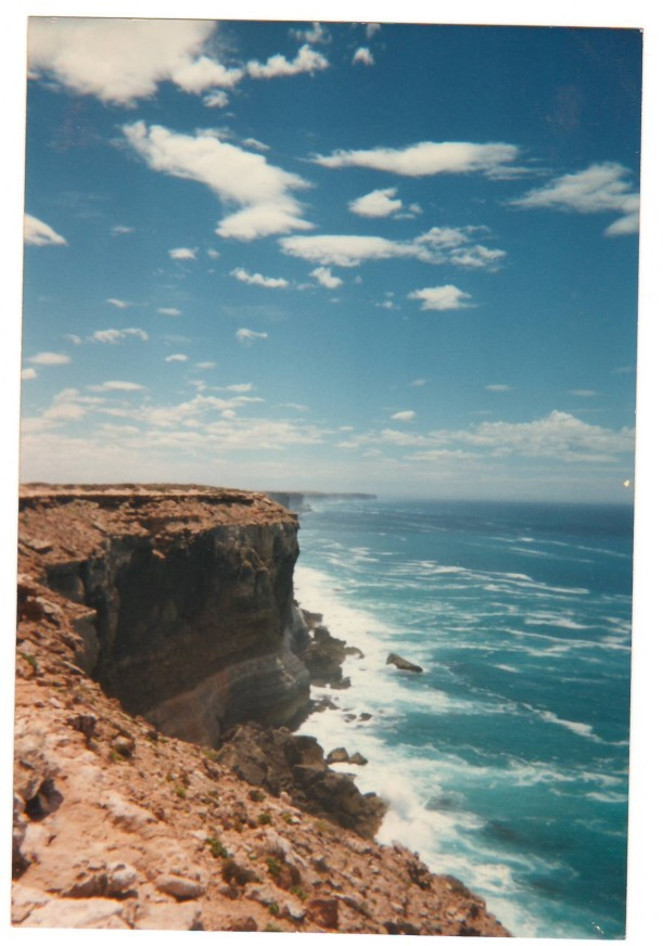 I snapped this photo on the other side of the tree pictured above, peeking over the 200 foot drop of The Great Australian Bight.