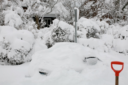 snow-2010